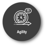 agility icon-opalean values