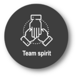 team spirit icon-opalean values