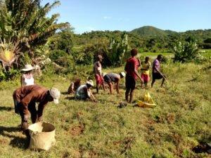 Opalean ReforestAction Madagascar